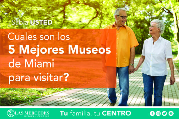 Los 5 Mejores Museos De Miami