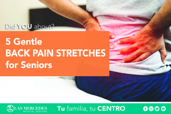 5 Gentle Back Pain Stretches For Seniors